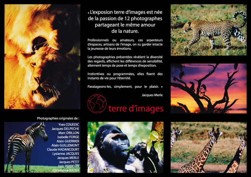 terre-d_images.png